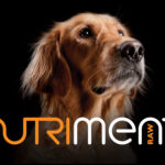 Davies Leslie-Smith - Nutriment